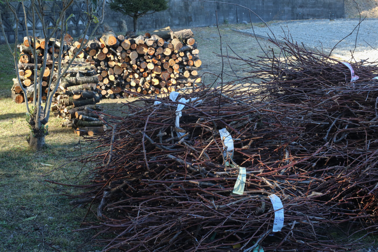 釉薬づくりに使う木の枝の写真