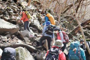 登山道の写真2