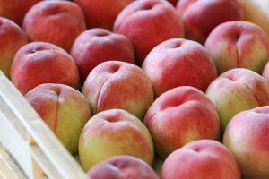 桃が並ぶ写真
